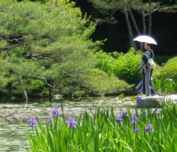 Встреча «Японский сад после 1868 года: в поисках нового языка»